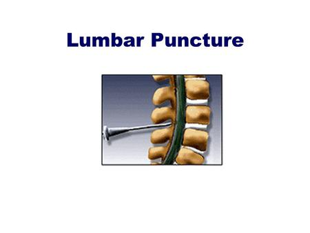 Lumbar Puncture. objectives To know the indication and contraindication for lumber puncture. To know the technique of insertion of the lumber puncture.