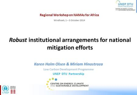 Robust institutional arrangements for national mitigation efforts Karen Holm Olsen & Miriam Hinostroza Low Carbon Development Programme UNEP DTU Partnership.