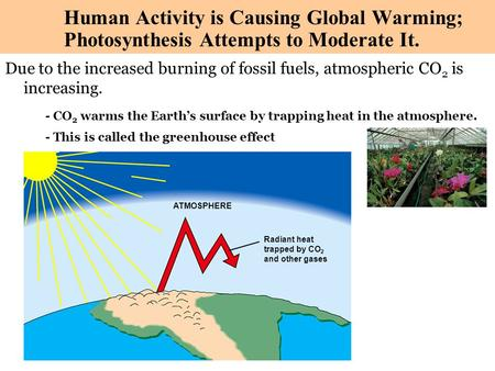 Copyright © 2003 Pearson Education, Inc. publishing as Benjamin Cummings Due to the increased burning of fossil fuels, atmospheric CO 2 is increasing.