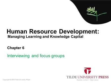 Managing Learning and Knowledge Capital Human Resource Development: Chapter 6 Interviewing and focus groups Copyright © 2010 Tilde University Press.