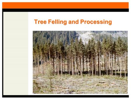 Tree Felling and Processing. Importance of the Felling and Processing Component An Example: For a 50 acre harvest unit in the Oregon Coast Range Clearcut.