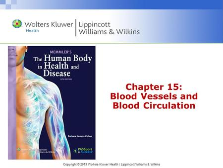 Chapter 15: Blood Vessels and Blood Circulation