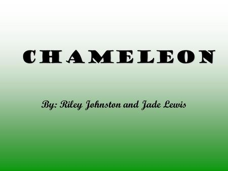 Chameleon By: Riley Johnston and Jade Lewis. Physical Description The body of a Chameleon is short and flat. Chameleons from 3.2-63cm. As many as three.
