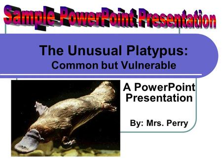 The Unusual Platypus: Common but Vulnerable