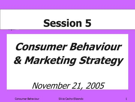 Consumer BehaviourSilvia Cacho-Elizondo1 Session 5 Consumer Behaviour & Marketing Strategy November 21, 2005.