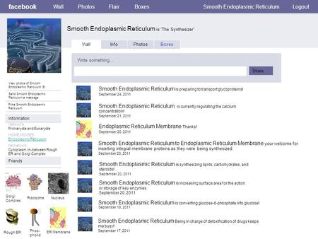 "Facebook Smooth Endoplasmic Reticulum is ""The Synthesizer"" WallPhotosFlairBoxesSmooth Endoplasmic ReticulumLogout View photos of Smooth Endoplasmic Reticulum."