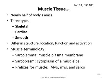 Muscle Tissue 11/14 Nearly half of body's mass Three types – Skeletal – Cardiac – Smooth Differ in structure, location, function and activation Muscle.