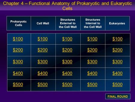 Chapter 4 – Functional Anatomy of Prokaryotic and Eukaryotic Cells $100 $200 $300 $400 $500 $100$100$100 $200 $300 $400 $500 Prokaryotic Cells Cell Wall.
