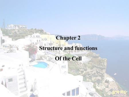 Chapter 2 Structure and functions Of the Cell. Nucleus: For storage of genetic information.