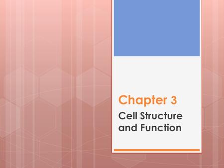 Chapter 3 Cell Structure and Function. 3.1: Cell Theory KEY CONCEPT : Cells are the Basic unit of life.