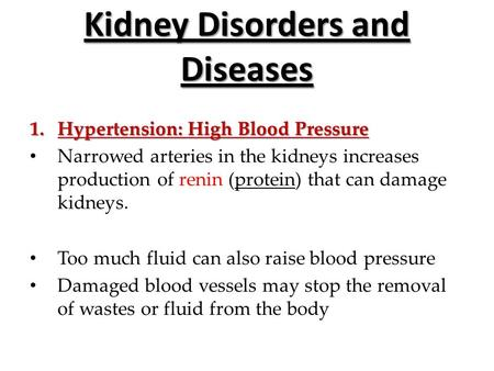 Kidney Disorders and Diseases 1.Hypertension: High Blood Pressure Narrowed arteries in the kidneys increases production of renin (protein) that can damage.