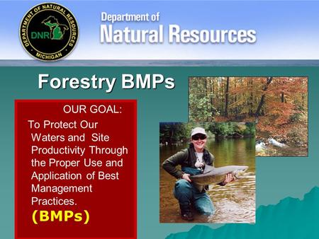 Forestry BMPs OUR GOAL: To Protect Our Waters and Site Productivity Through the Proper Use and Application of Best Management Practices. (BMPs)