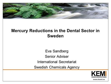 Www.kemi.se Mercury Reductions in the Dental Sector in Sweden Eva Sandberg Senior Adviser International Secretariat Swedish Chemicals Agency.