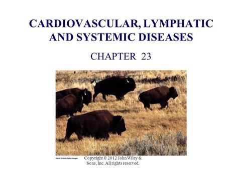 CARDIOVASCULAR, LYMPHATIC AND SYSTEMIC DISEASES CHAPTER 23 Copyright © 2012 John Wiley & Sons, Inc. All rights reserved.