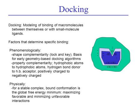 Docking: Modeling of binding of macromolecules between themselves or with small-molecule ligands. Factors that determine specific binding: Phenomenologically: