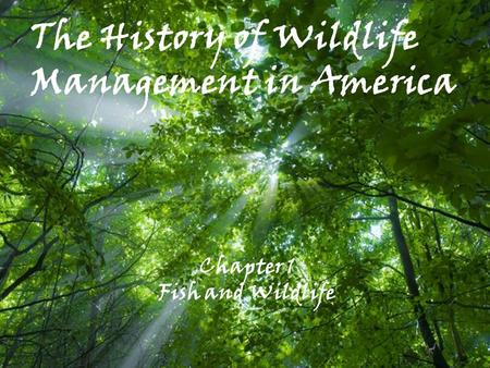 The History of Wildlife Management in America