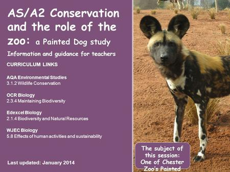 AS/A2 Conservation and the role of the zoo: a Painted Dog study Information and guidance for teachers CURRICULUM LINKS AQA Environmental Studies 3.1.2.