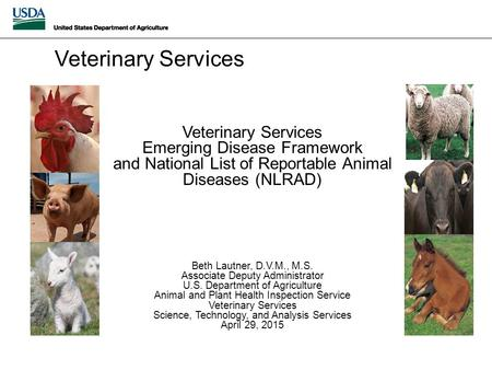 Veterinary Services Emerging Disease Framework and National List of Reportable Animal Diseases (NLRAD) Beth Lautner, D.V.M., M.S. Associate Deputy Administrator.