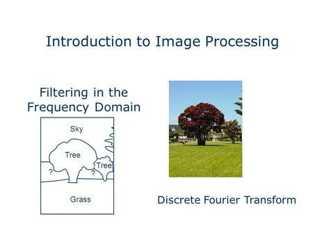 Introduction to Image Processing Grass Sky Tree ? ? Filtering in the Frequency Domain Discrete Fourier Transform.