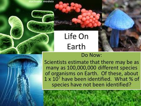 Life On Earth Do Now: Scientists estimate that there may be as many as 100,000,000 different species of organisms on Earth. Of these, about 1 x 10 7 have.