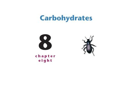 Carbohydrates (also called saccharides) are—on the basis of mass—the most abundant class of biological molecules on Earth. Although all organisms can.