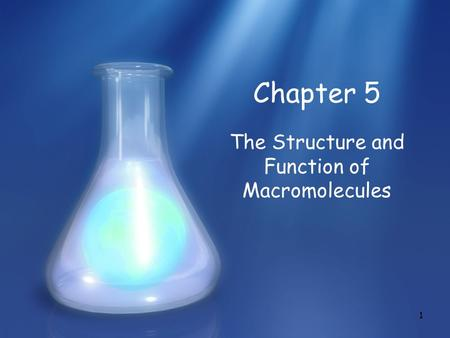 1 Chapter 5 The Structure and Function of Macromolecules.