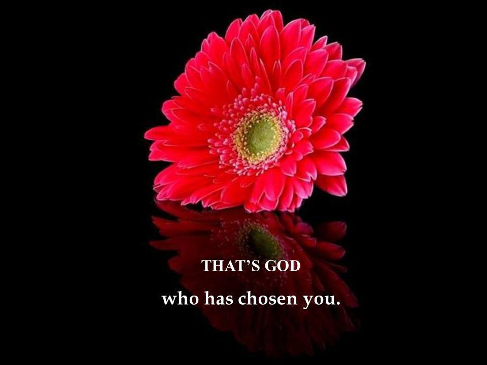 THAT'S GOD who has chosen you.