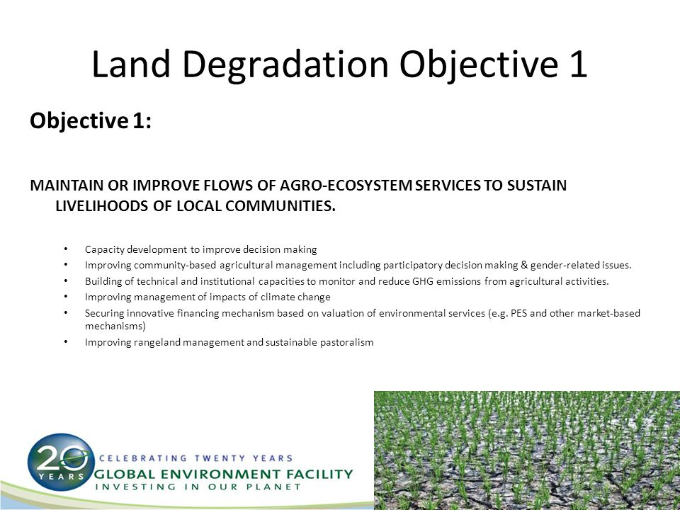 Land Degradation Objective 2 Objective 2: GENERATE SUSTAINABLE FLOWS OF FOREST ECOSYSTEM SERVICES IN ARID, SEMI-ARID AND SUB- HUMID ZONES, INCLUDING SUSTAINING LIVELIHOODS OF FOREST-DEPENDENT PEOPLE Capacity development: Forest policy and related legal and regulatory frameworks Sustainable management of forests and trees outside forests for timber and non-timber products.