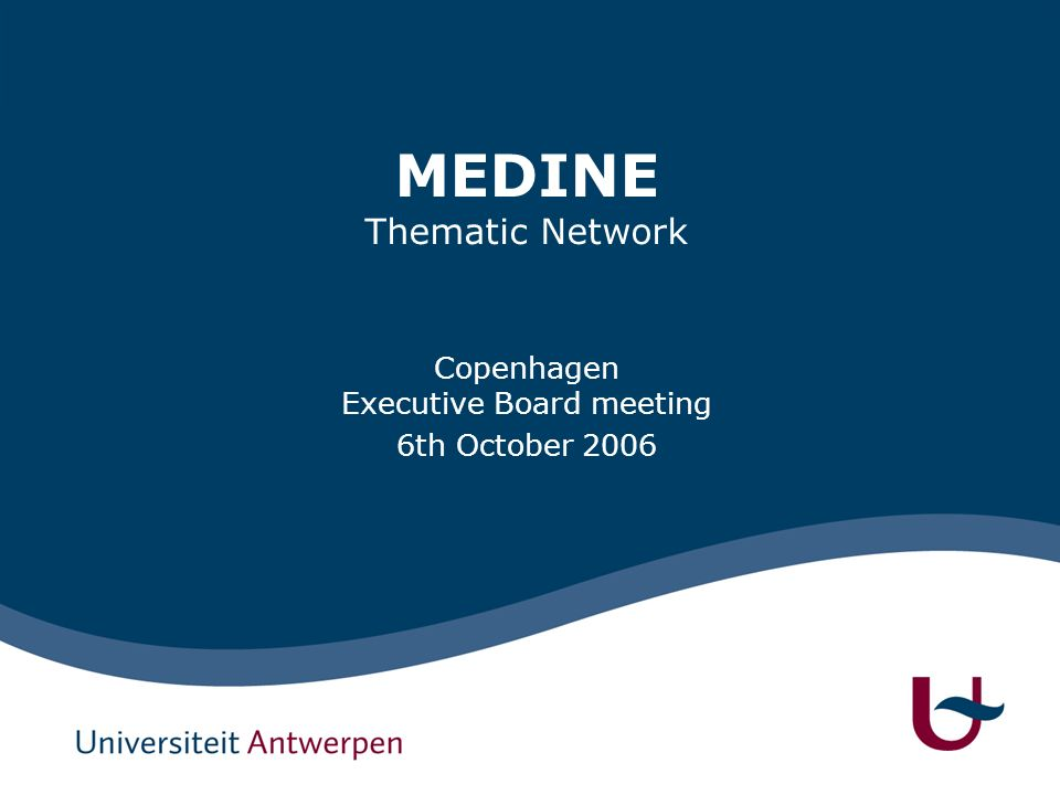 MEDINE Thematic Network Copenhagen Executive Board meeting 6th October 2006