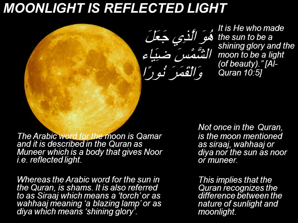 The Verses Are Added For Us Read Quran There are many sites from where you can read The Glorious Quran online Try http://tafheem-ul-quran.com Or http://quranexplorer.com Or http://islamicity.comhttp://tafheem-ul-quran.com http://quranexplorer.com http://islamicity.com The most Important thing to think is why these facts are mentioned in this book of religion The Glorious Quran is for all times and these verses were purposefully added so that hundreds of years later (that is this age) when human knowledge would reach to verify the reality in them they would accept the truth.