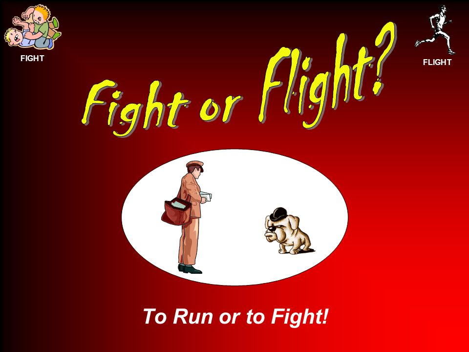 FIGHT FLIGHT To Run or to Fight!