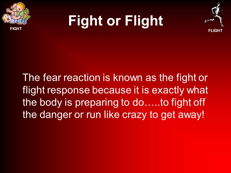 FIGHT FLIGHT Fight or Flight The fear reaction is known as the fight or flight response because it is exactly what the body is preparing to do…..to fight off the danger or run like crazy to get away!