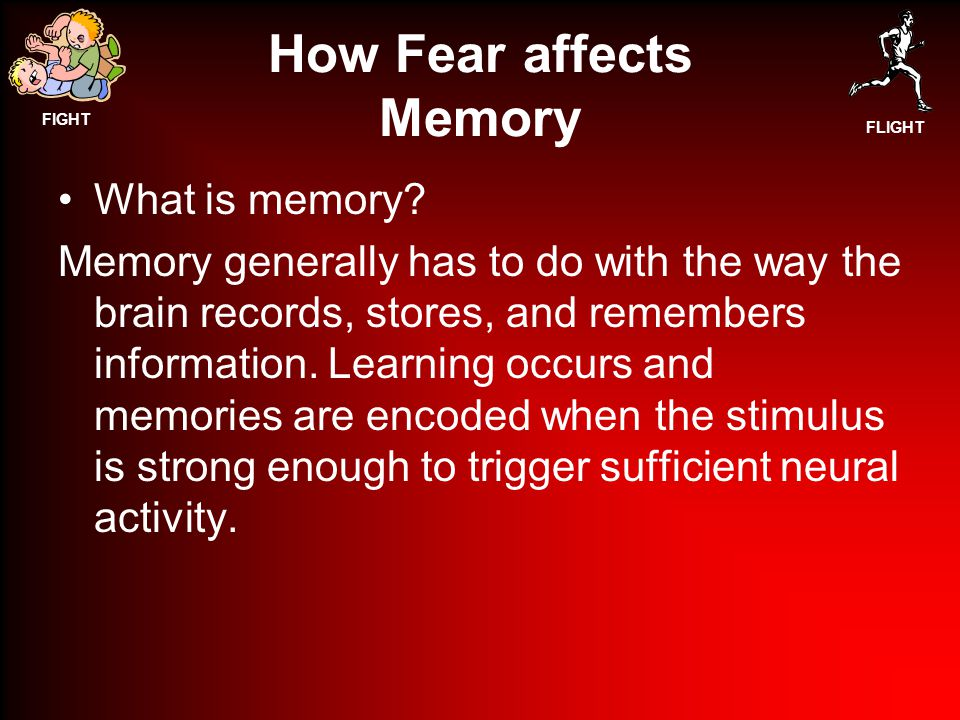 FIGHT FLIGHT How Fear affects Memory What is memory.