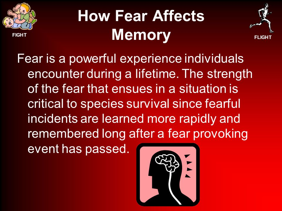 FIGHT FLIGHT How Fear Affects Memory Fear is a powerful experience individuals encounter during a lifetime.