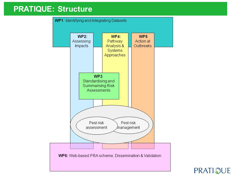 PRATIQUE: Work Packages & Stages in the PRA Scheme Detailed pest risk assessment needed.