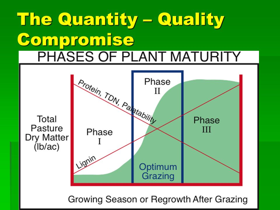 Factors affecting forage quality u Plant maturity u Species u Plant Part
