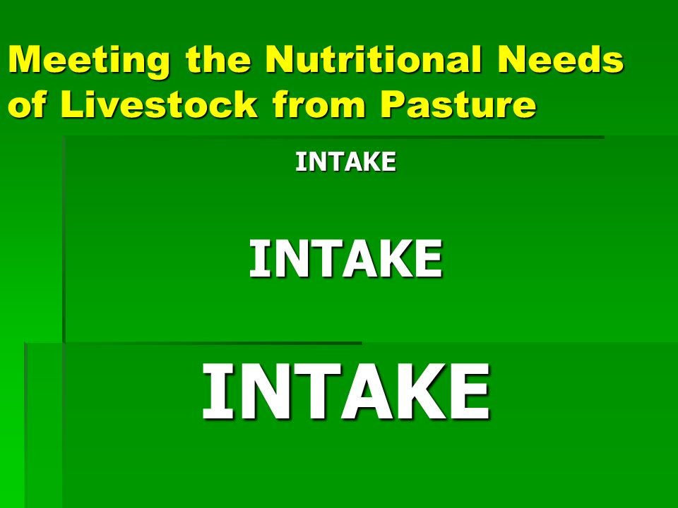 Overview Balancing animal numbers and forage supply Balancing animal numbers and forage supply Matching diet quantity and quality needs Matching diet quantity and quality needs Matching grazing management and paddock numbers Matching grazing management and paddock numbers