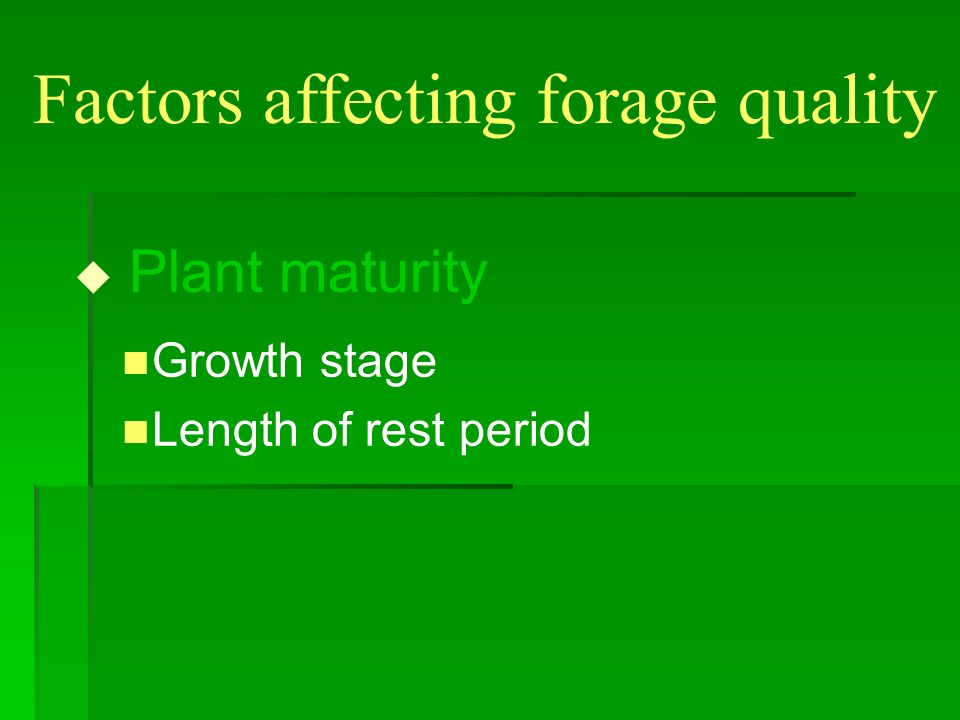 Plant Growth Phases
