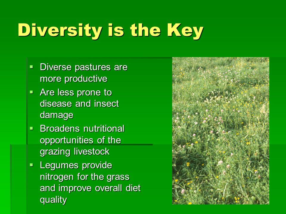 Factors affecting forage quality u Plant part n Leaves vs stems n First bite vs second bite