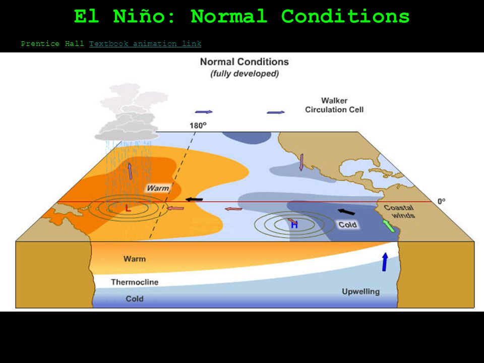Prentice Hall Textbook animation linkTextbook animation link El Niño: El Nino Development