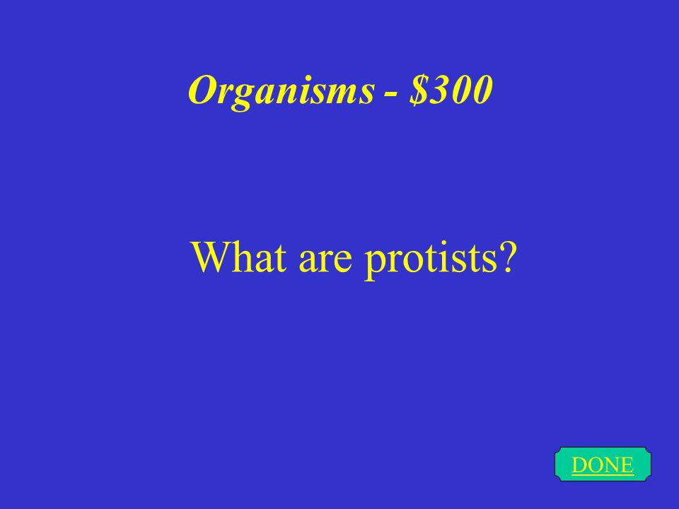 Organisms - $300 DONE What are protists?