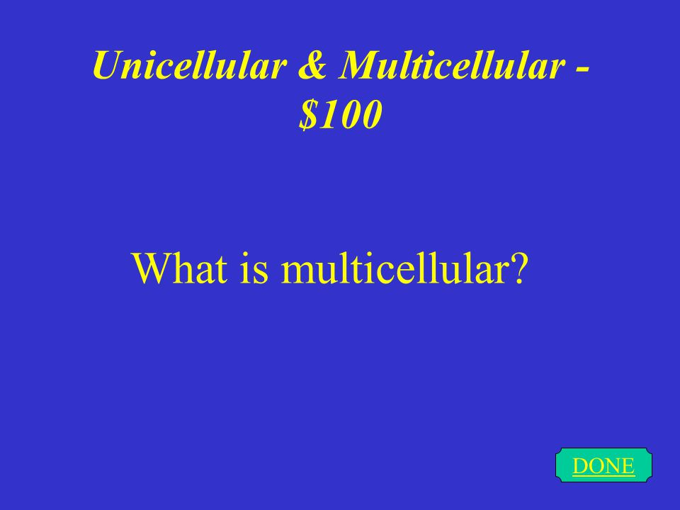 Unicellular & Multicellular - $100 DONE What is multicellular?