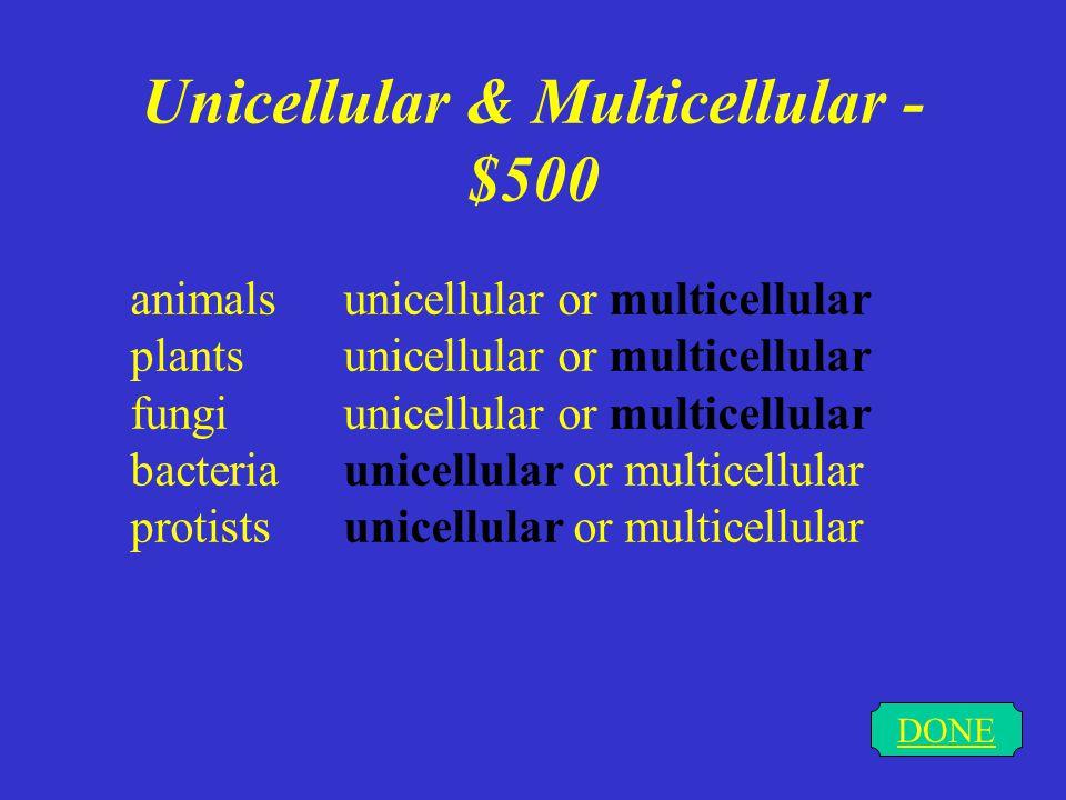 Unicellular & Multicellular - $500 DONE animals unicellular or multicellular plantsunicellular or multicellular fungi unicellular or multicellular bacteria unicellular or multicellular protists unicellular or multicellular