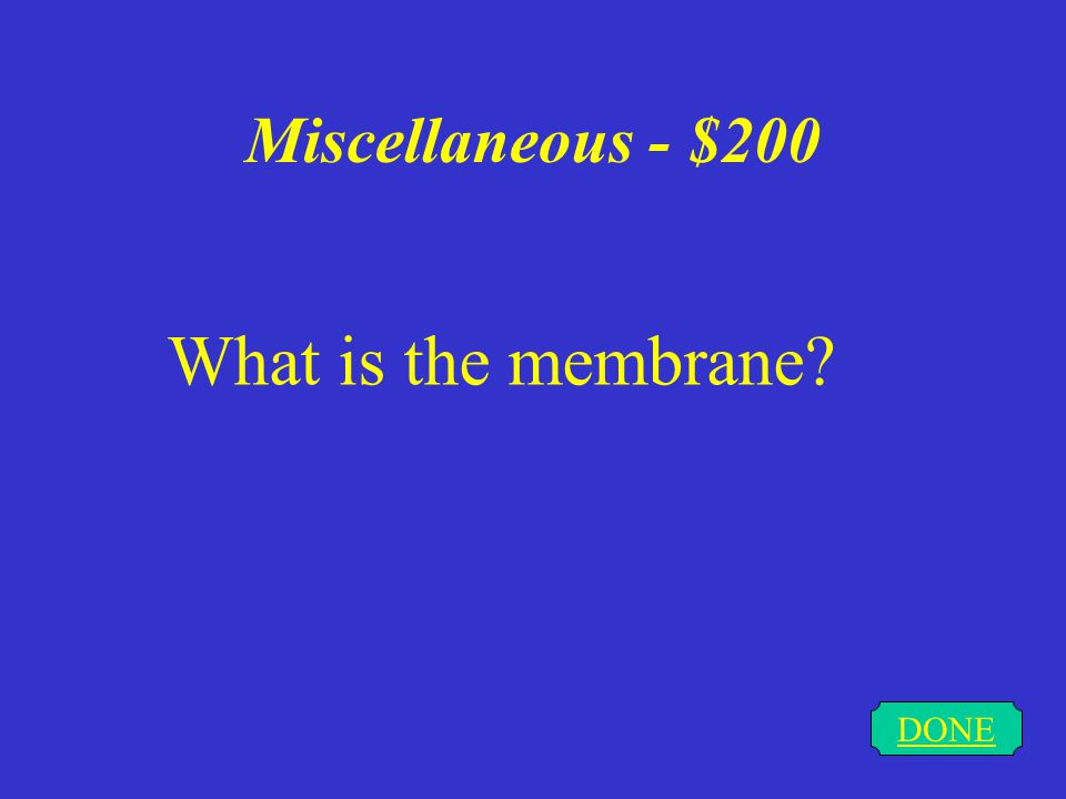 Miscellaneous - $200 DONE What is the membrane?