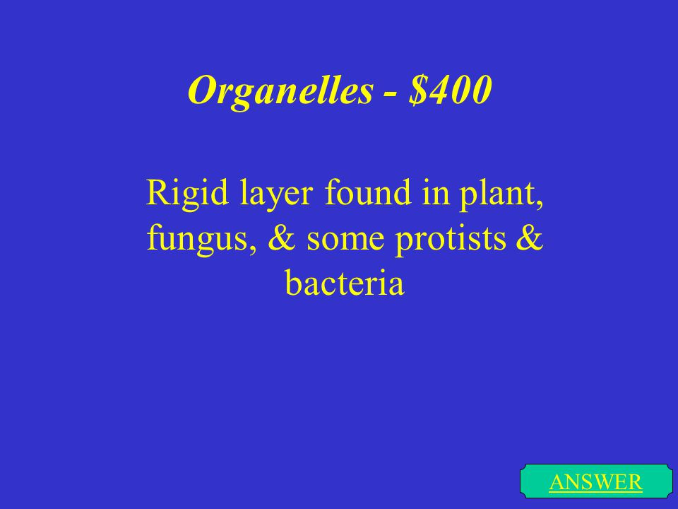 Organelles - $400 ANSWER Rigid layer found in plant, fungus, & some protists & bacteria