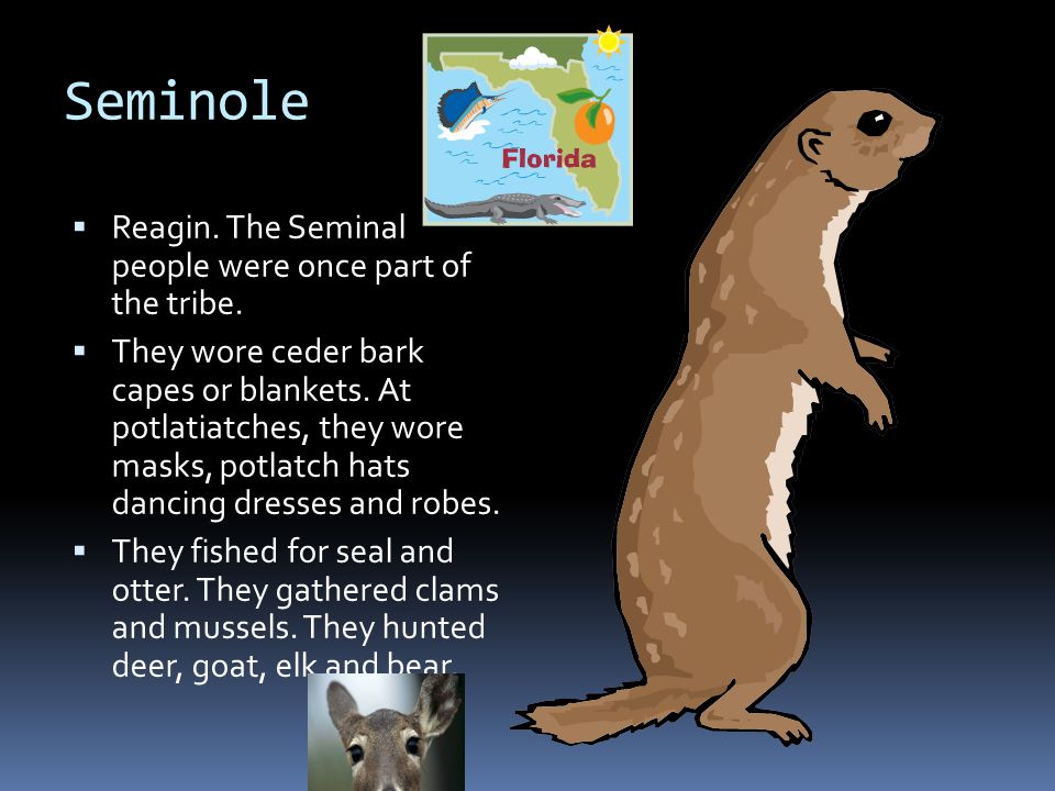Seminole  Reagin.The Seminal people were once part of the tribe.
