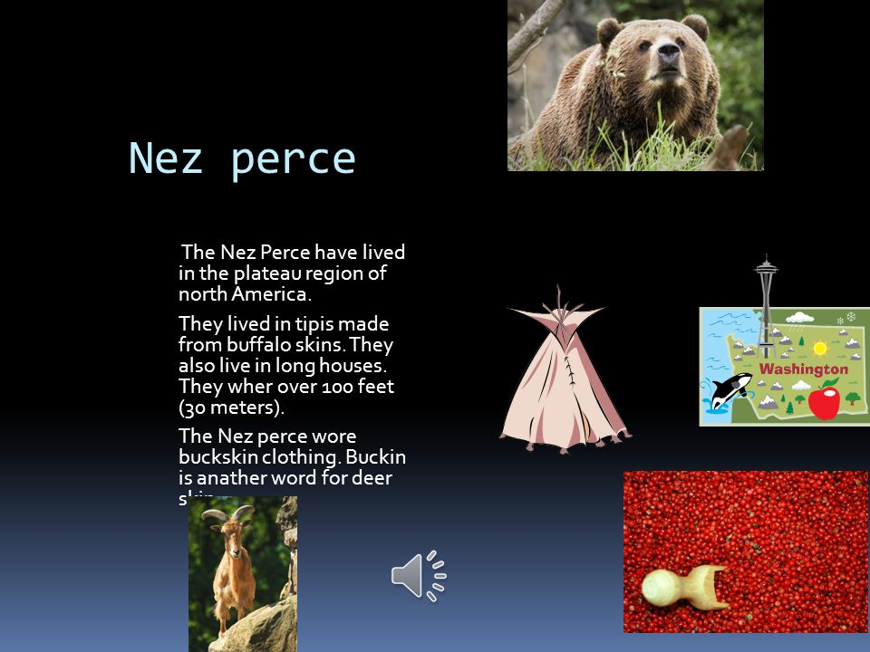 Nez perce The Nez Perce have lived in the plateau region of north America.