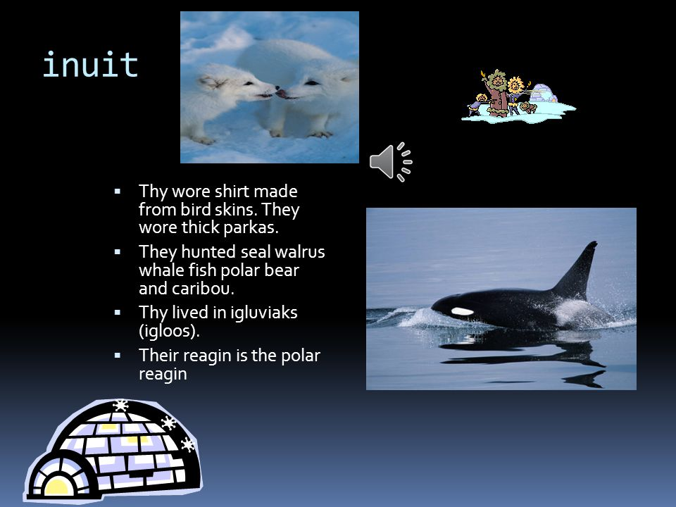 inuit  Thy wore shirt made from bird skins.They wore thick parkas.