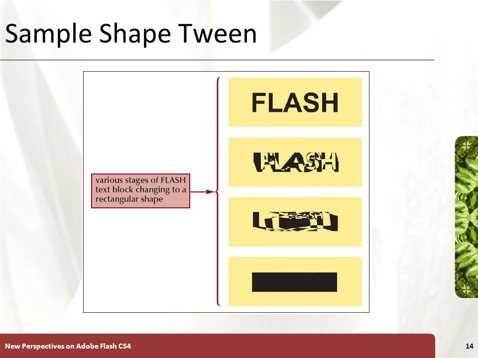 XP Animation Plan for Text Blocks New Perspectives on Adobe Flash CS415