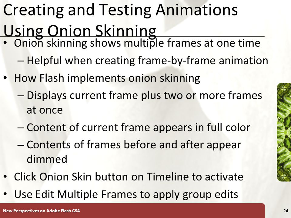 XP Onion Skin Options New Perspectives on Adobe Flash CS425
